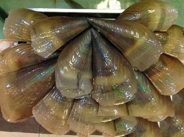 Đặc sản Còi Biên Mai Phú Quốc