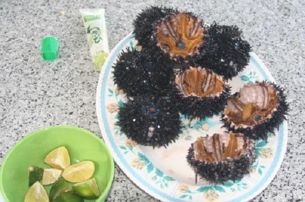 Nhum biển Phú Quốc sống ăn với mù tạt và chanh