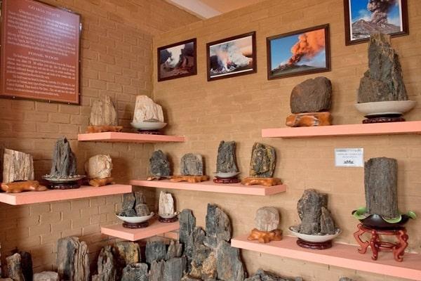 Bộ sưu tập đá, nhũ hóa thạch cổ xưa