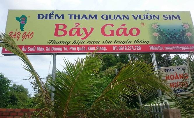 Mua đặc sản Rượu Sim Phú Quốc tại vườn sim