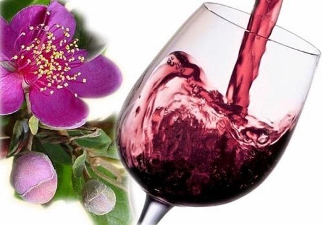 Đặc sản Rượu Sim Phú Quốc nức tiếng