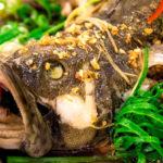 Cá bống mú hấp gừng Phú Quốc