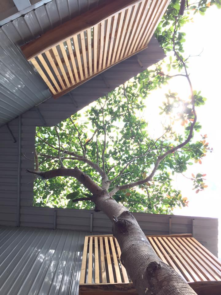 Khung cảnh tuyệt vời chỉ có tại Peace House - Phú Quốc