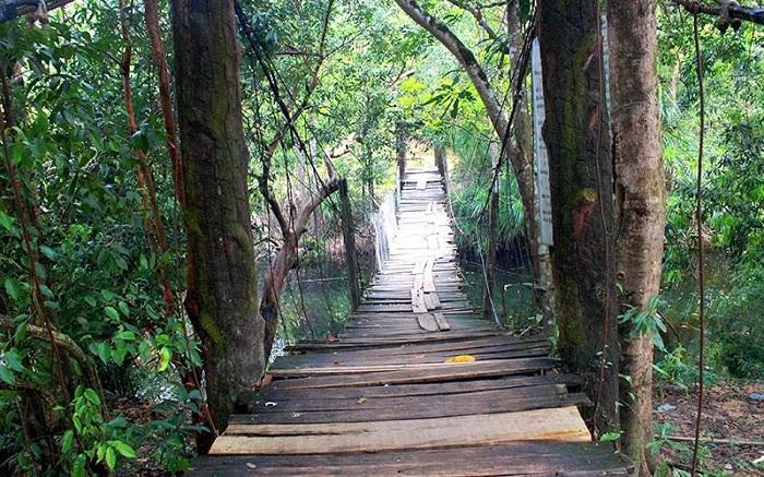 Cầu treo tại suối Đá Bàn