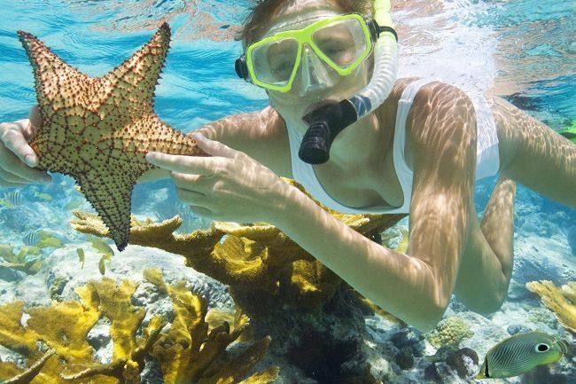 Hoạt động lặn biển thú vị ở Bãi Sao.