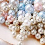 Ngọc trai - sản vật quý giá của Phú Quốc